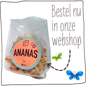 bestel_in_onze_webshop_ananas