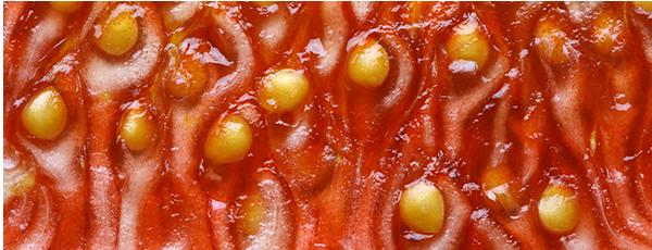 slider-gedroogd-fruit