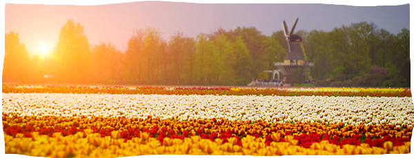 slider-van-hollandsche-bodem